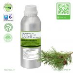 tinh-dau-thong-pine-essential-oil